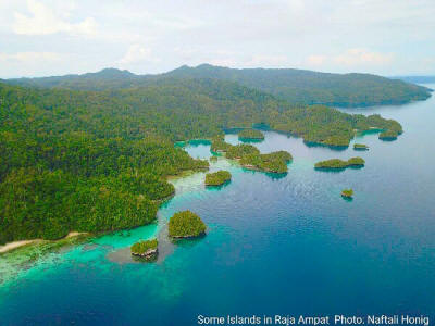 Some islands in Raja Ampat