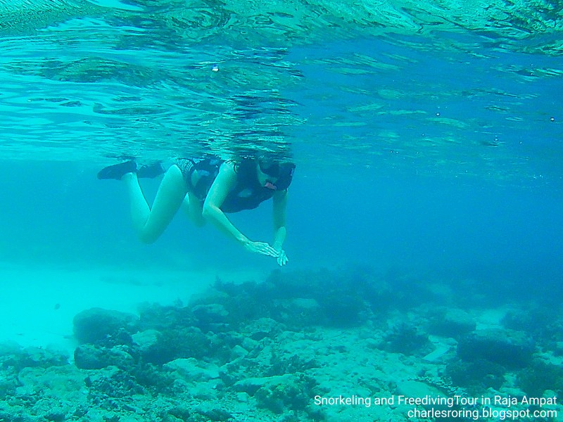 Dutch lady was snorkeling in Raja Ampat with Charles Roring
