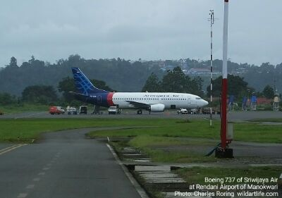 Boeing 737 of Sriwijaya Air at Rendani airport of Manokwari city, the capital of West Papua province of Indonesia.