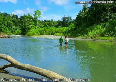 Rainforest Riverwalk Tour in Manokwari
